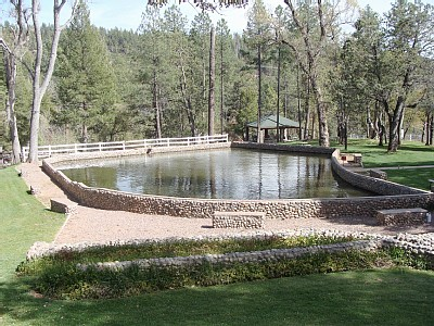 Payson cabin rental - Pond in front of Cabin